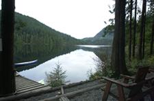 Malclolm Knapp Research Forest