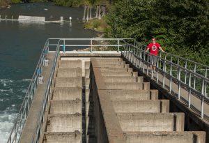 Seton Dam fishway